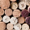 Enjoy the wine festivals of France in a campervan
