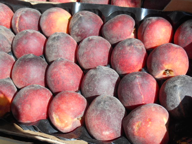 A tray full of French peaches