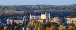 The Loire Valley Chateau and town of Amboise