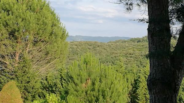 Yelloh Village Campsite D'Arnauteille near Cacassonne