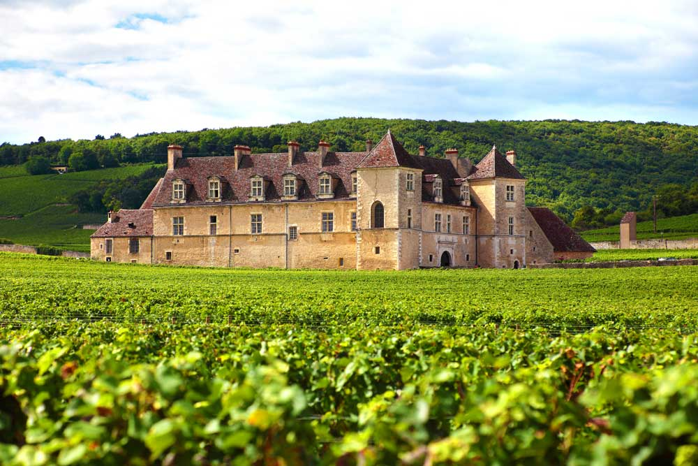A motorhome trip is a great way to explore the wine regions of France combining accommodation and transport as you follow wine trails