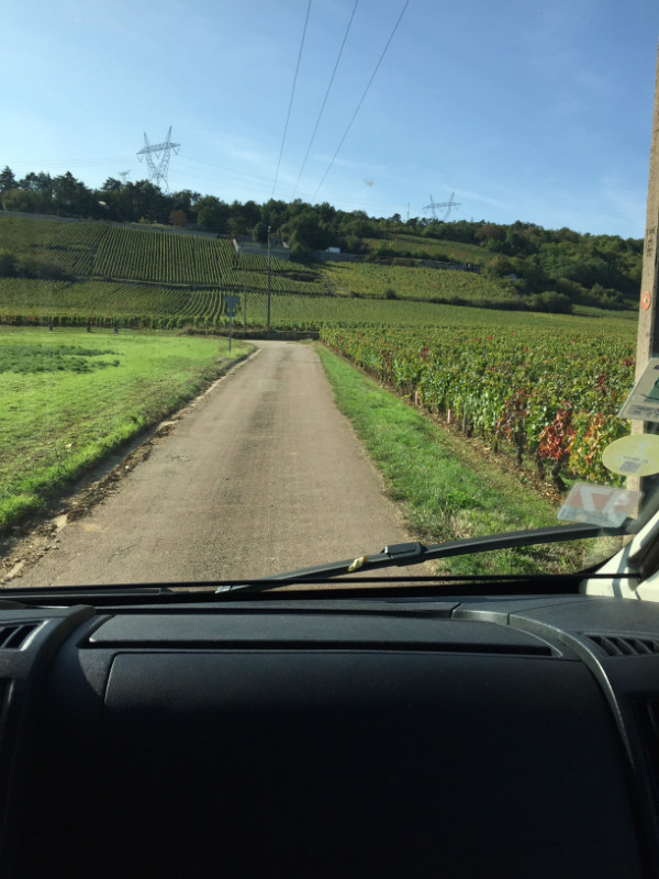 View vineyards through the windscreen of a campervan