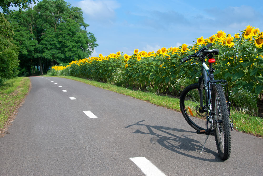 The eight best cycle routes in France