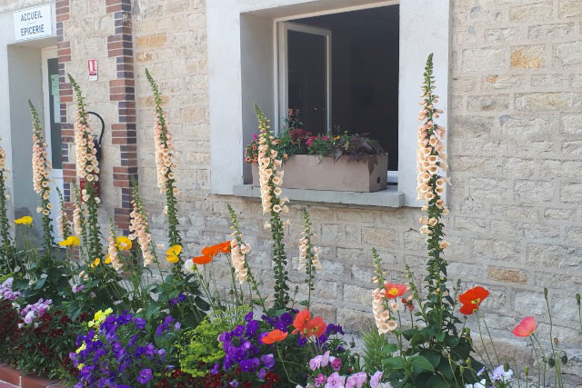 Pretty flowers at the entrance to the reception and shop at Joigny Campsite