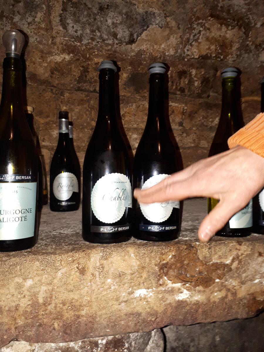 We tasted Bourgogne Aligote, Chablis and St Bris at Bersan et Fills