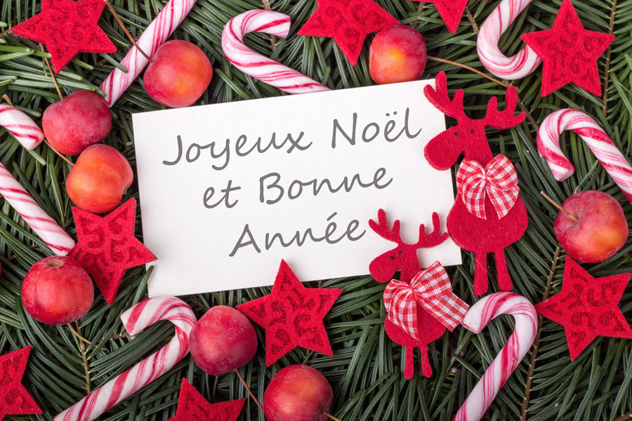 Wishing all of our clients a Merry Christmas and a Happy New Year from the France Motorhome Hire Team