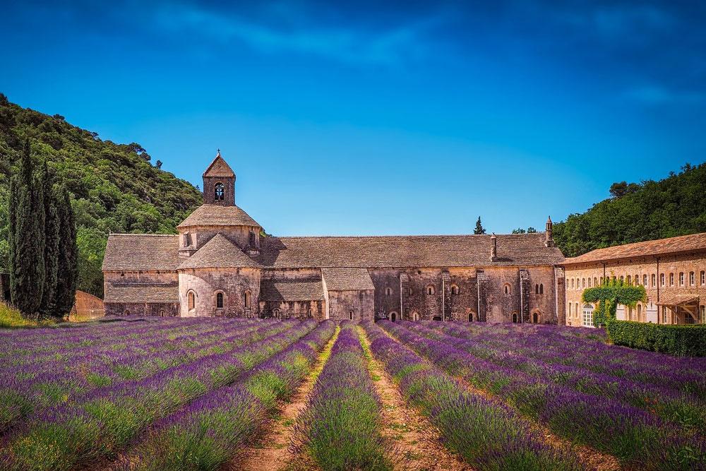 Abbey de senanque, Avignon.